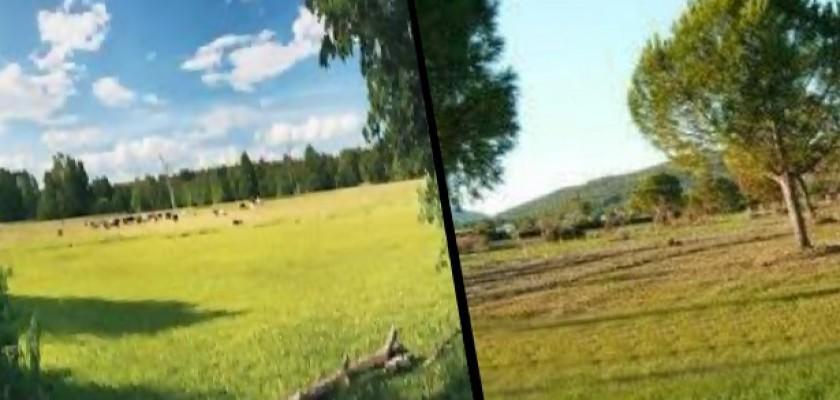 Arsa ve Araziler Satın Alırken Önemli Hususlar