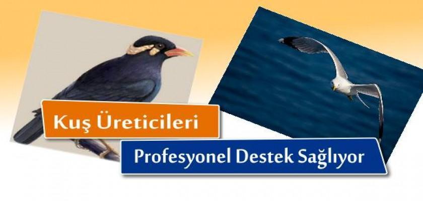 Kuş Üreticileri Profesyonel Destek Sağlıyor